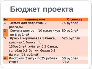 Бюджет проекта № наименование Стоимость 1 Земля для подготовки рассады 75 руб
