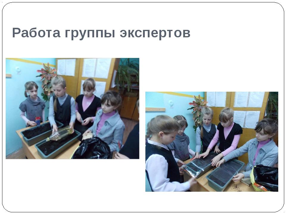 Работа группы экспертов