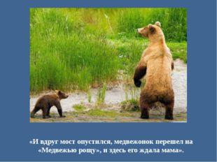 «И вдруг мост опустился, медвежонок перешел на «Медвежью рощу», и здесь его ж