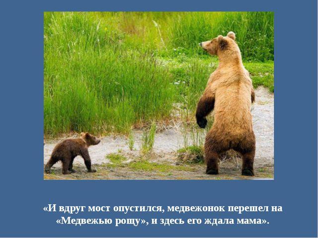 «И вдруг мост опустился, медвежонок перешел на «Медвежью рощу», и здесь его ж...