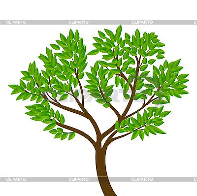 http://img.cliparto.com/pic/xl/183526/3051183-tree.jpg