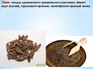 Тмин- плоды однолетнего травянистого растения. Имеют вкус жгучий, горьковато-