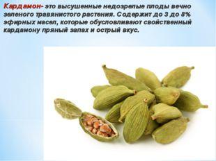 Кардамон- это высушенные недозрелые плоды вечно зеленого травянистого растени