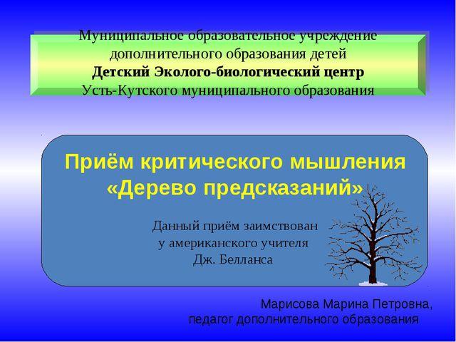 Муниципальное образовательное учреждение дополнительного образования детей Де...