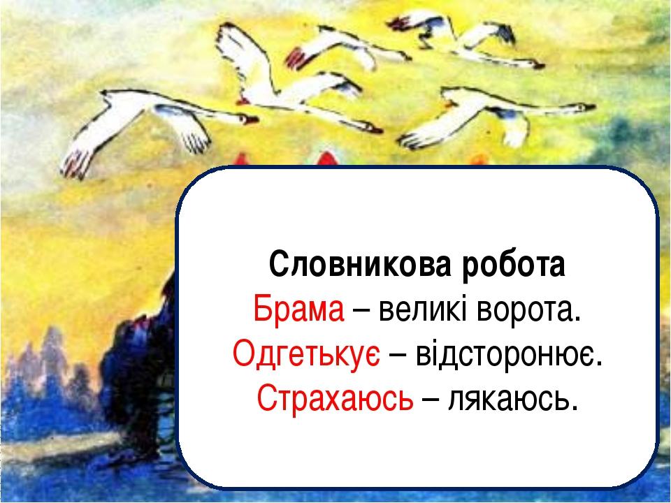 Словникова робота Брама – великі ворота. Одгетькує – відсторонює. Страхаюсь –...