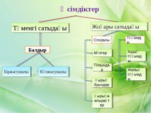 Өсімдіктер Балдыр Төменгі сатыдағы Біржасушалы Көпжасушалы Споралы Тұқымды М
