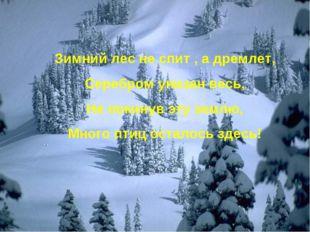 Зимний лес не спит , а дремлет, Серебром унизан весь, Не покинув эту землю, М