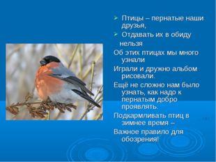 Птицы – пернатые наши друзья, Отдавать их в обиду нельзя Об этих птицах мы мн