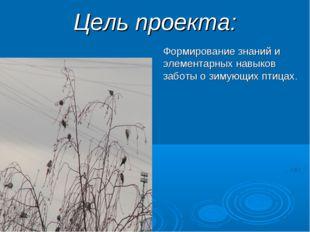 Цель проекта: Формирование знаний и элементарных навыков заботы о зимующих пт