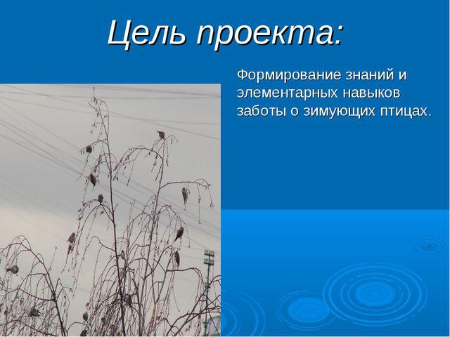 Цель проекта: Формирование знаний и элементарных навыков заботы о зимующих пт...