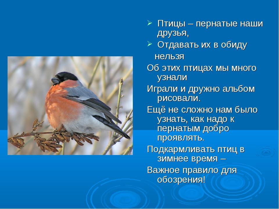 Птицы – пернатые наши друзья, Отдавать их в обиду нельзя Об этих птицах мы мн...
