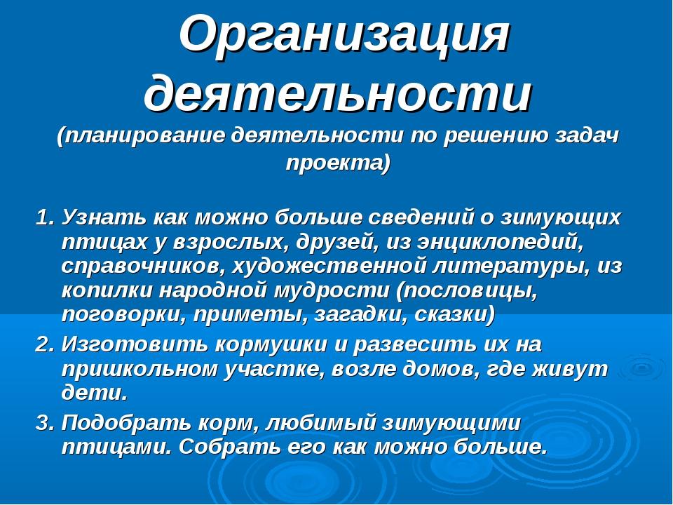 Организация деятельности (планирование деятельности по решению задач проекта...