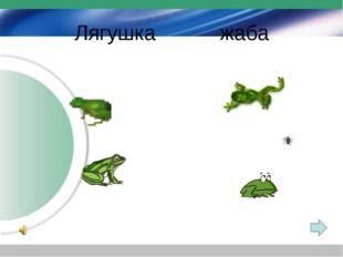 Лягушка жаба