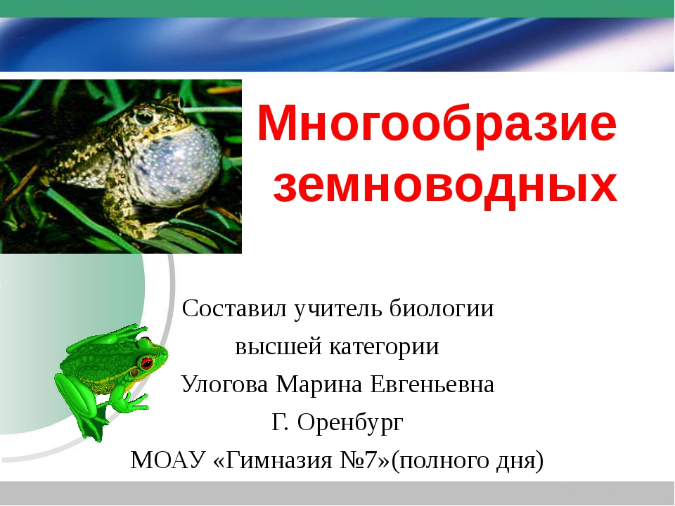 Многообразие земноводных Составил учитель биологии высшей категории Улогова М...