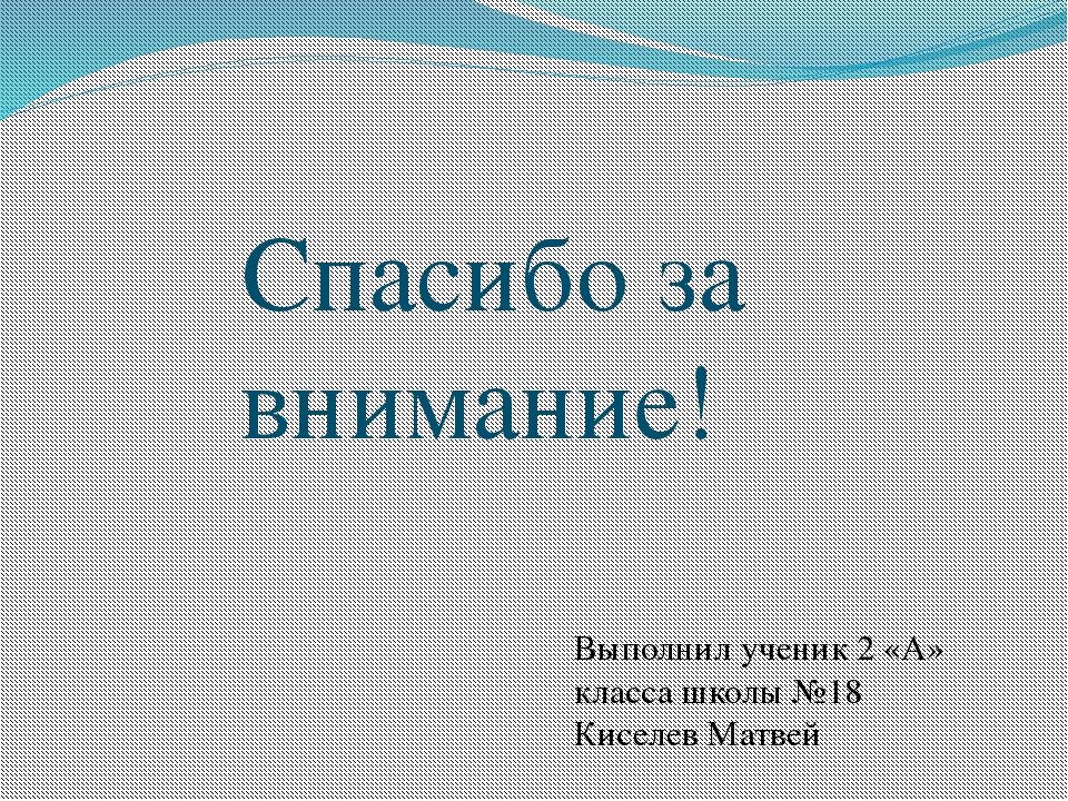 Спасибо за внимание! Выполнил ученик 2 «А» класса школы №18 Киселев Матвей