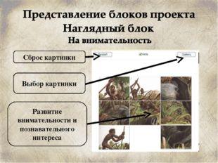 Сброс картинки Развитие внимательности и познавательного интереса Выбор карти