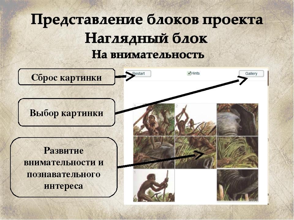 Сброс картинки Развитие внимательности и познавательного интереса Выбор карти...