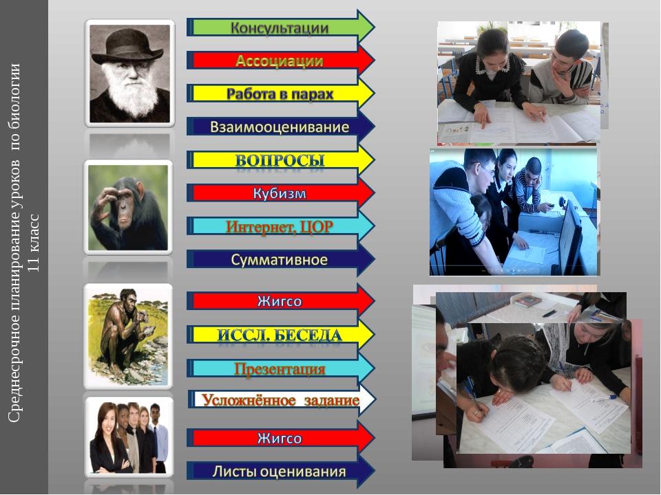 Среднесрочное планирование уроков по биологии 11 класс