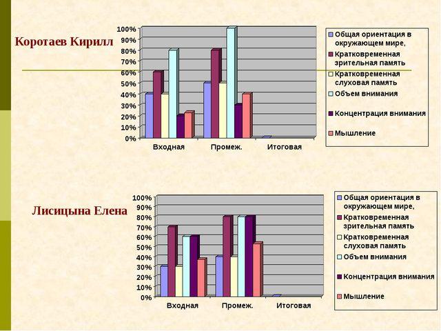 Коротаев Кирилл Лисицына Елена
