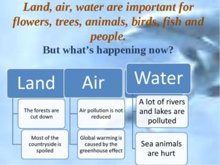 Land, air, water are important for flowers, trees, animals, birds, fish and