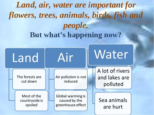 Land, air, water are important for flowers, trees, animals, birds, fish and...