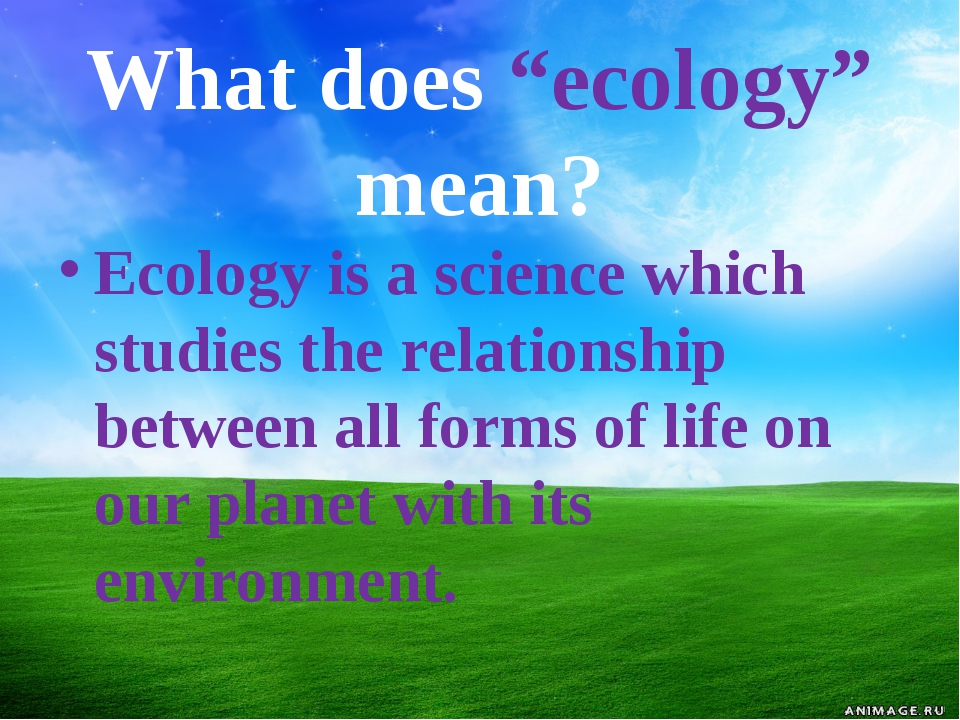 """What does """"ecology"""" mean? Ecology is a science which studies the relationship..."""