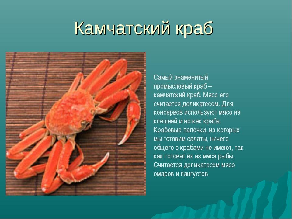 Камчатский краб Самый знаменитый промысловый краб – камчатский краб. Мясо его...