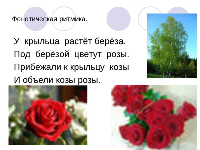 Фонетическая ритмика. У крыльца растёт берёза. Под берёзой цветут розы. Прибе...