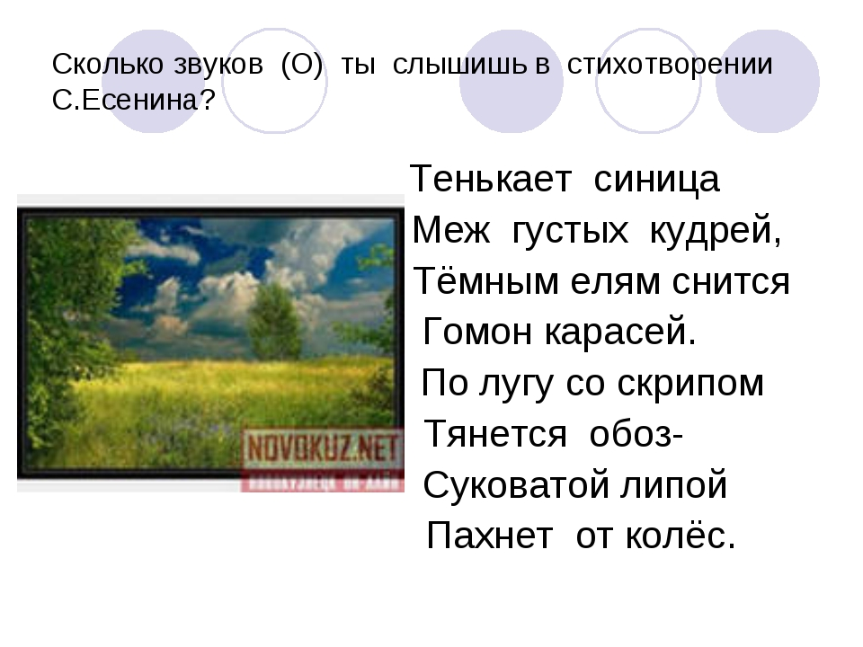 Сколько звуков (О) ты слышишь в стихотворении С.Есенина? Тенькает синица Меж...