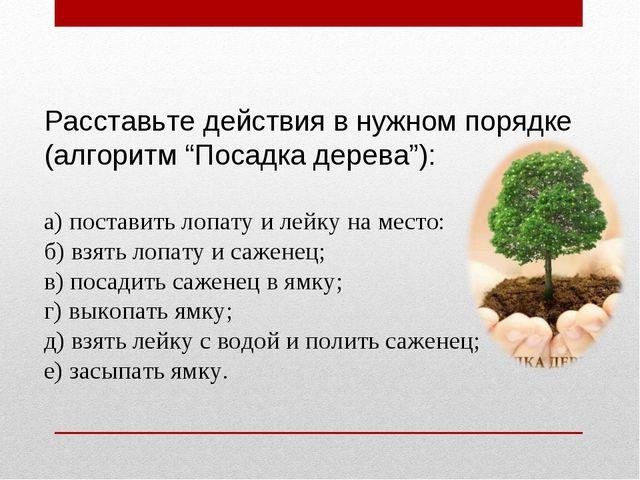 """Расставьте действия в нужном порядке (алгоритм """"Посадка дерева""""): а) поставит..."""
