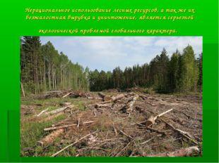 Нерациональное использование лесных ресурсов, а так же их безжалостная вырубк