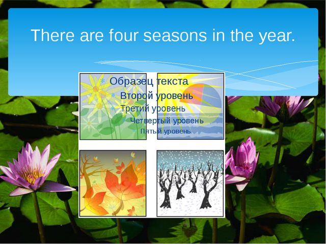 There are four seasons in the year.