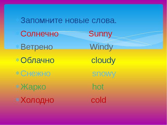 Запомните новые слова. Солнечно Sunny Ветрено Windy Облачно cloudy Снежно sno...