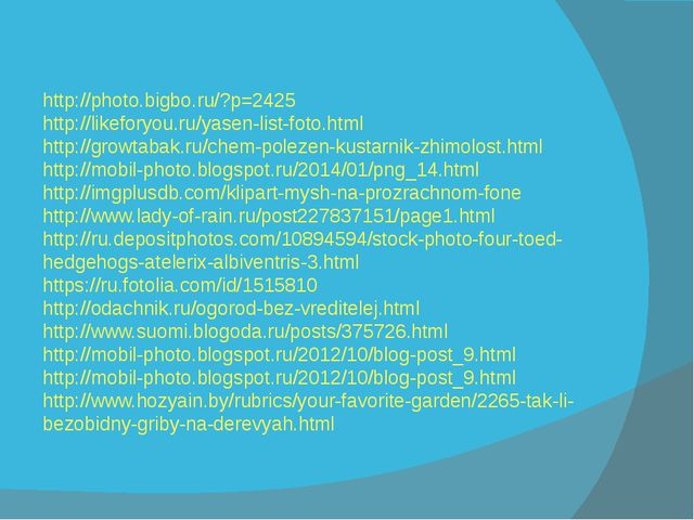 http://photo.bigbo.ru/?p=2425 http://likeforyou.ru/yasen-list-foto.html http...
