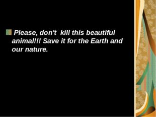 Please, don't kill this beautiful animal!!! Save it for the Earth and our na