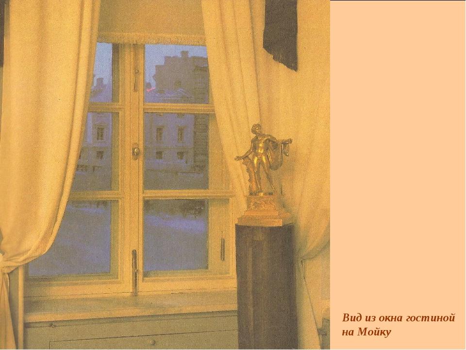 Вид из окна гостиной на Мойку