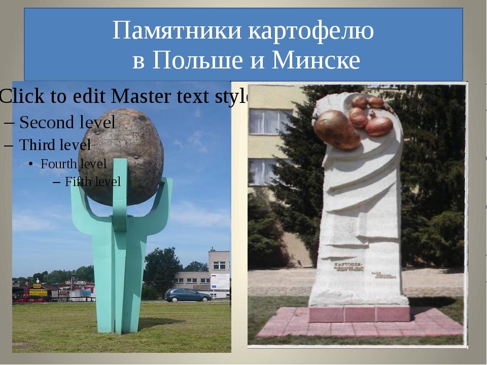 Памятники картофелю в Польше и Минске