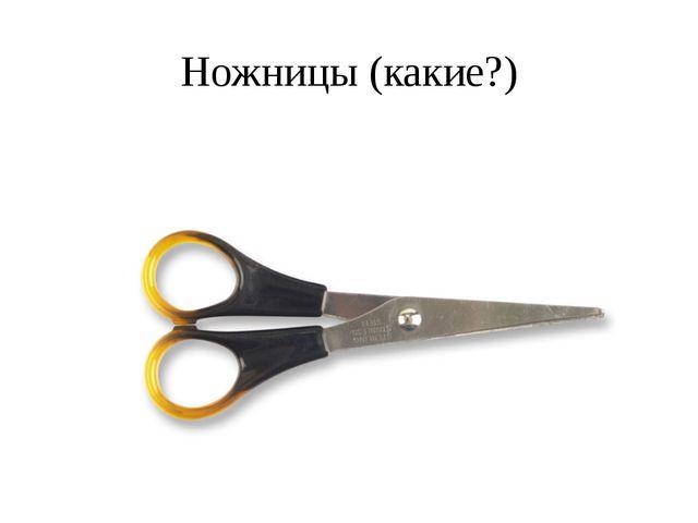 Ножницы (какие?)