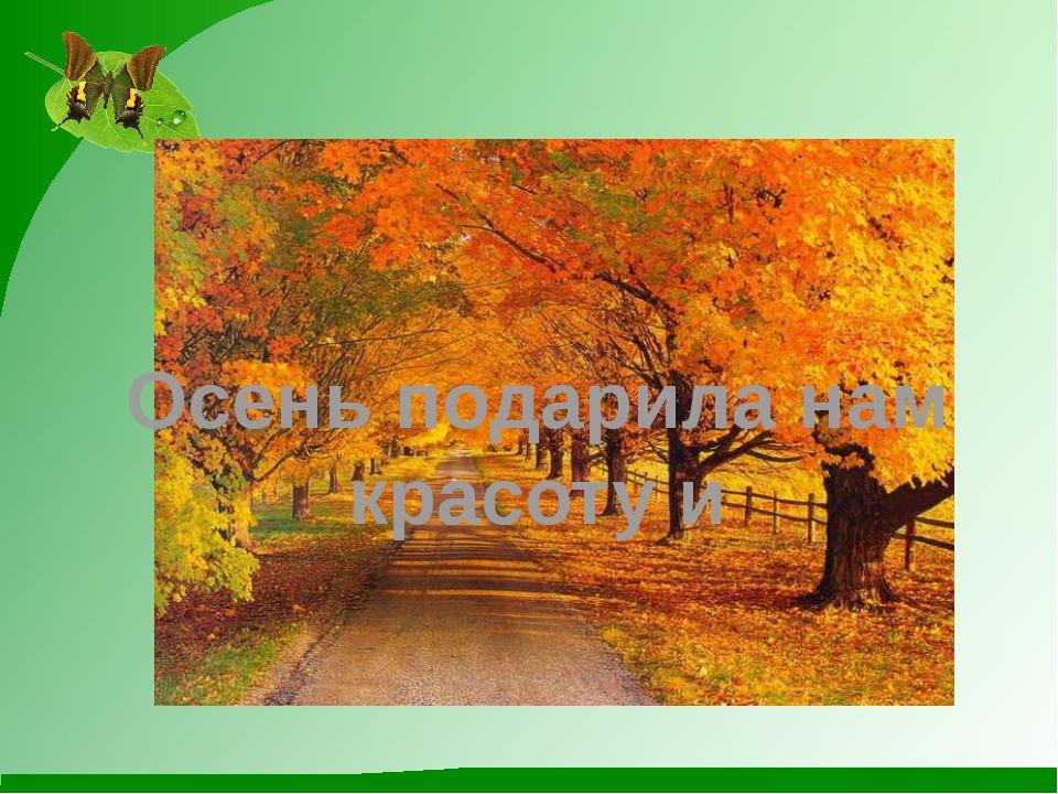 Осень подарила нам красоту и