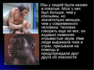 . Лбы у людей были низкие и покатые. Мозг у них был больше, чем у обезьяны, н