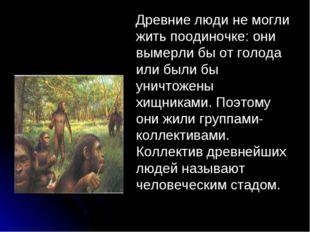 . Древние люди не могли жить поодиночке: они вымерли бы от голода или были б