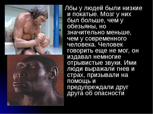 . Лбы у людей были низкие и покатые. Мозг у них был больше, чем у обезьяны, н...