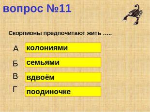 вопрос №11 Скорпионы предпочитают жить ….. А Б В Г колониями семьями вдвоём п