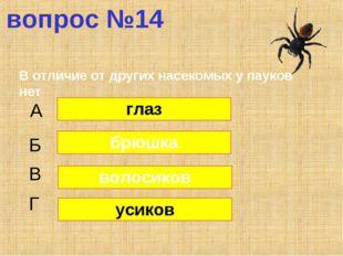 вопрос №14 В отличие от других насекомых у пауков нет А Б В Г глаз брюшка вол