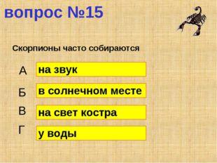 вопрос №15 Скорпионы часто собираются А Б В Г на звук в солнечном месте на св