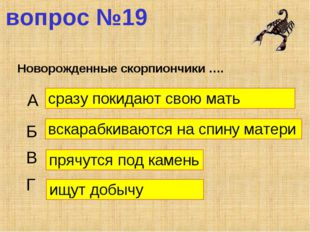 вопрос №19 Новорожденные скорпиончики …. А Б В Г сразу покидают свою мать вск