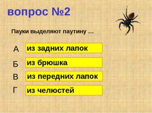 вопрос №2 Пауки выделяют паутину … А Б В Г из задних лапок из брюшка из перед
