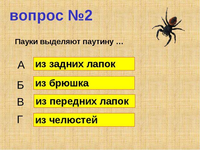 вопрос №2 Пауки выделяют паутину … А Б В Г из задних лапок из брюшка из перед...