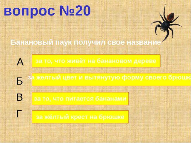 вопрос №20 Банановый паук получил свое название А Б В Г за то, что живёт на б...