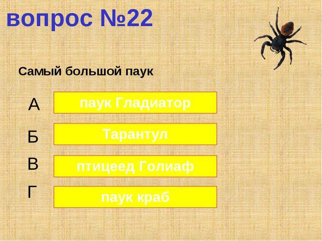 вопрос №22 Самый большой паук А Б В Г паук Гладиатор Тарантул птицеед Голиаф...